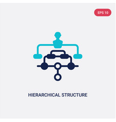 Two color hierarchical structure icon from vector