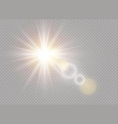 white sunlight light vector image