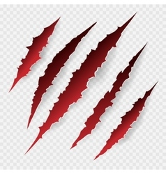 Scratches isolated on transparent background vector image