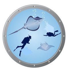 Divers and stingrays vector