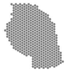 Gray hexagon tanzania map vector