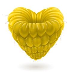 Malina heart yellow 01 vector