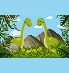 two brachiosaurus in the field vector image