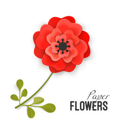 paper flower lush red peony on small stem with vector image vector image