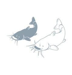 fish catfish vector image vector image