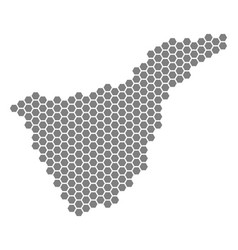 Gray hexagon tenerife spain island map vector