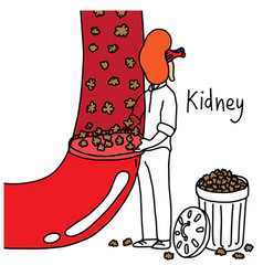 Kidney to filter wastes from blood vector