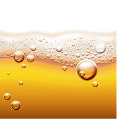 light beer background vector image