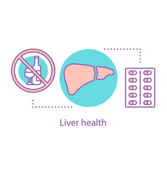 Liver health concept icon vector