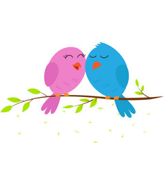 love bird on a branch vector image