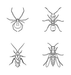 spider ant wasp bee insects set collection vector image