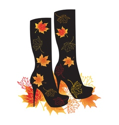 Autumn boots with maple leaves vector image