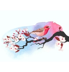 Pink bird on cherry branch vector image