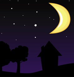 moon night sky vector image vector image