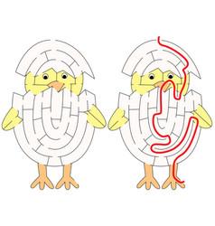 Easy chicken maze vector