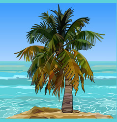 lonely furry palm tree on the shore of the azure vector image