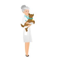 Senior caucasian veterinarian with dog in hands vector