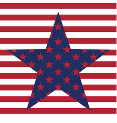 Usa star pattern background american vector