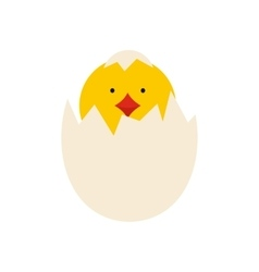 yellow newborn chicken hatched from egg icon vector image