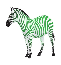 Zebra with strips of green color vector image