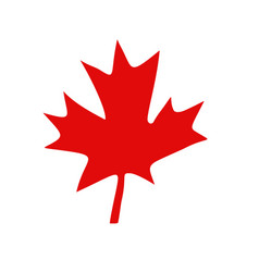 canadian red maple leaf vector image