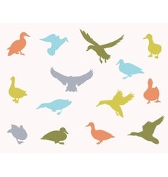 silhouettes of ducks vector image