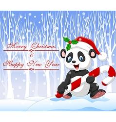 Cartoon funny panda bear holding Christmas candy vector image vector image