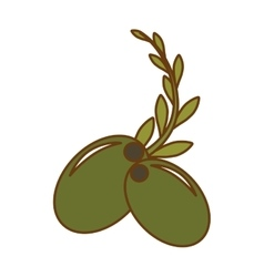 olive and branch icon image vector image