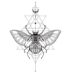 hand drawn esoteric symbol bug with sacred vector image