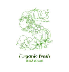 Letter s pattern logo organic farm fresh fruits vector