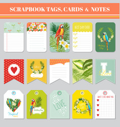 Tropical flowers and parrots tags cards and notes vector