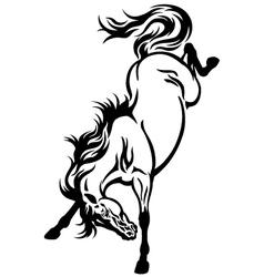 bucking horse tattoo vector image