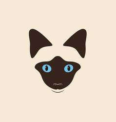 head siamese cat vector image vector image