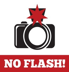 noflash1 resize vector image vector image