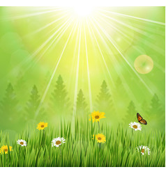 spring background with flowers and butterflies vector image