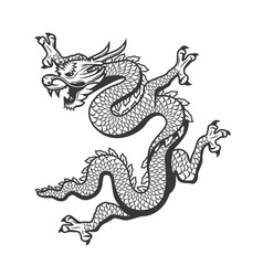 chinese dragon china new year zodiac symbol vector image