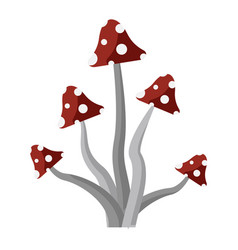 fly agaric witchery mushrooms flat style icon vector image