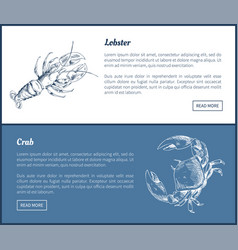 lobster and crab seafood double color graphic vector image