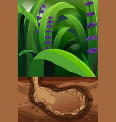 Nature scene with underground hole vector
