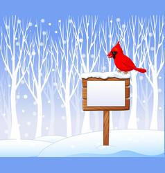 Cartoon cardinal bird on the blank sign vector image