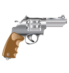Weapon revolver vector image vector image