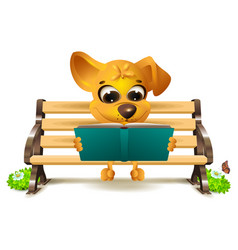 yellow dog sits on bench and reads book vector image vector image