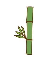 bamboo plant icon image vector image