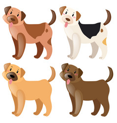 four dogs with different fur colors vector image