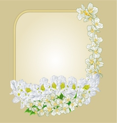 Frame with white rhododendron and jasmine vector