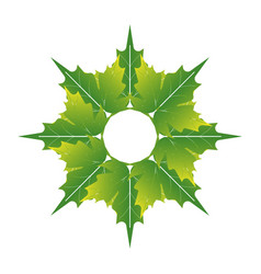 Green leaf icon for application or website vector