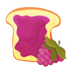 raspberry jam on toast with jelly made in cartoon vector image