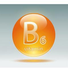 Vitamin b6 vector
