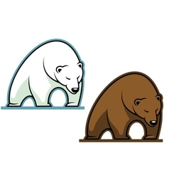 Big kodiak bear vector image vector image