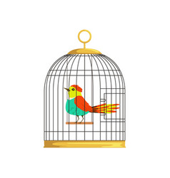 beautiful character of colorful bird in cage vector image